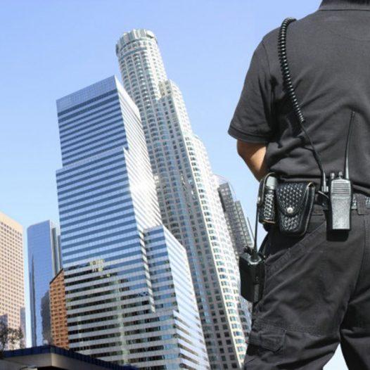 Vigilante de Seguridad – T.I.P. Policía